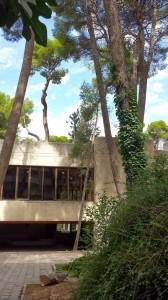 Museo+Albacete